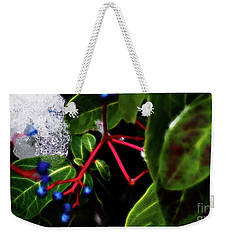 Light And Ice Weekender Tote Bag by Cameron Wood