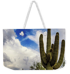 Weekender Tote Bag featuring the photograph Light And Shadow by Rick Furmanek