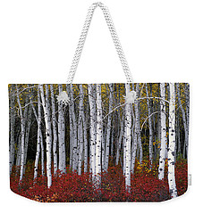 Light In Forest Weekender Tote Bag