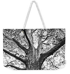 Weekender Tote Bag featuring the photograph Light, Shadows And Texture by Karen Stahlros