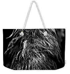Weekender Tote Bag featuring the photograph Light Shadows by Eric Christopher Jackson