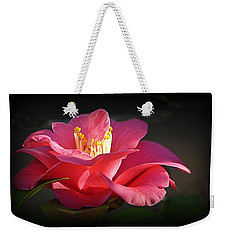 Weekender Tote Bag featuring the photograph Lighted Camellia by AJ Schibig