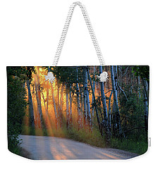 Weekender Tote Bag featuring the photograph Lighting The Way by Shane Bechler