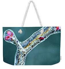 Lilac Buds In Ice Weekender Tote Bag by Robert FERD Frank