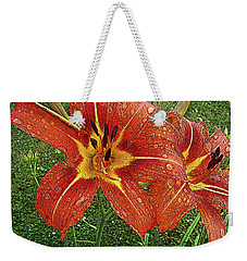 Weekender Tote Bag featuring the drawing Lilium Asiatic by Diane E Berry
