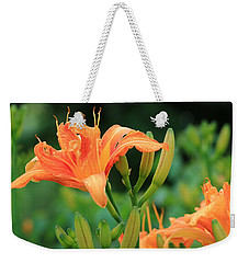 Weekender Tote Bag featuring the photograph Lily Of The Evening by Rick Morgan