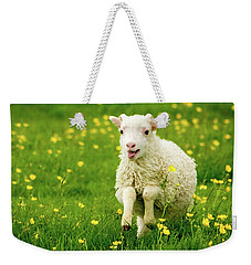 Lilly The Lamb Weekender Tote Bag by Joan Davis