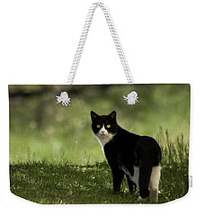 Lilly Weekender Tote Bag by Trish Tritz