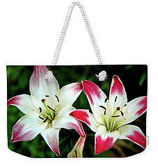 Weekender Tote Bag featuring the photograph Lily Pink Reflections by LeeAnn McLaneGoetz McLaneGoetzStudioLLCcom