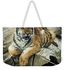 Weekender Tote Bag featuring the photograph Lily Tiger 4534 by Janis Knight