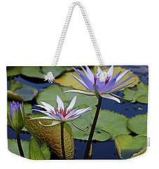 Weekender Tote Bag featuring the photograph Lily Trio by Judy Vincent