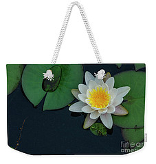 Weekender Tote Bag featuring the photograph Lilypad by Debra Fedchin
