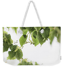 Linden In The Rain 2 -  Weekender Tote Bag