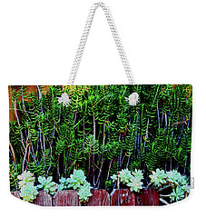 Line Of Succulents And Red Fence Weekender Tote Bag