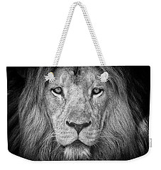 Weekender Tote Bag featuring the photograph Lion 5716 by Traven Milovich