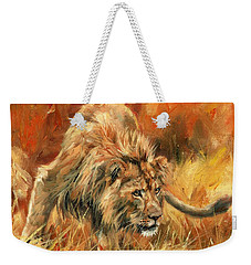 Weekender Tote Bag featuring the painting Lion Alert by David Stribbling