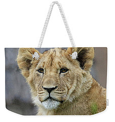 Lion Cub Close Up Weekender Tote Bag