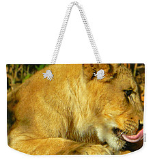 Lion Cub - What A Yummy Snack Weekender Tote Bag