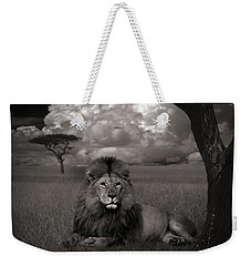 Lion In The Grass Weekender Tote Bag