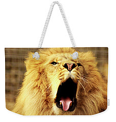 Weekender Tote Bag featuring the photograph Lion King Yawning by Ayasha Loya
