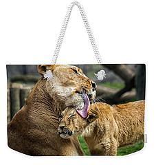 Lion Mother Licking Her Cub Weekender Tote Bag