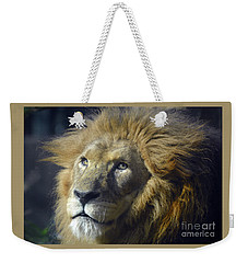 Weekender Tote Bag featuring the photograph Lion Portrait by Savannah Gibbs