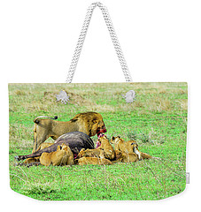 Lion Pride With Cape Buffalo Capture Weekender Tote Bag