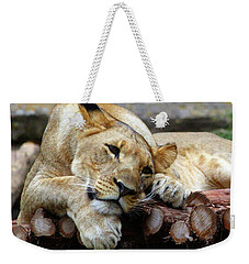 Lion Resting Weekender Tote Bag