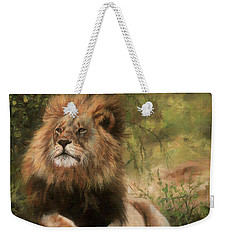 Weekender Tote Bag featuring the painting Lion Resting by David Stribbling