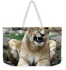 Lioness 2 Weekender Tote Bag
