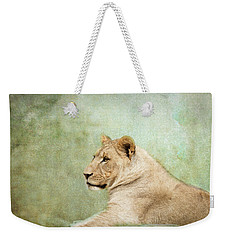 Lioness Portrait II Weekender Tote Bag by Wade Brooks