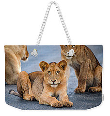 Lions Stare Weekender Tote Bag