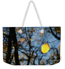 Weekender Tote Bag featuring the photograph Lit Lone Leaf by Kennerth and Birgitta Kullman