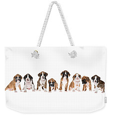 Litter Of Boxer Puppies Weekender Tote Bag by Diane Diederich