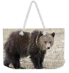 Little America Cub Weekender Tote Bag