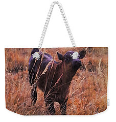 Little Angus Bull Calf Weekender Tote Bag
