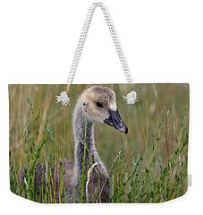 Little Baby Delight Weekender Tote Bag