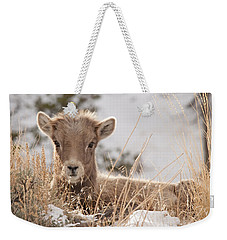 Little Bighorn Weekender Tote Bag