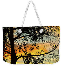 Weekender Tote Bag featuring the photograph Little Birdie Told Me So by James BO Insogna