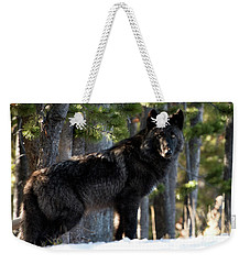 Little Blackie Weekender Tote Bag