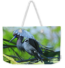 Weekender Tote Bag featuring the photograph Little Blue Heron Alligator Farm by Deborah Benoit