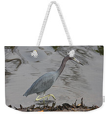 Little Blue Heron Walking Weekender Tote Bag by Christiane Schulze Art And Photography