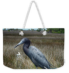 Weekender Tote Bag featuring the photograph Little Blue Portrait by Judy Hall-Folde