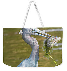 Little Blue Shows Me Its Catch Weekender Tote Bag