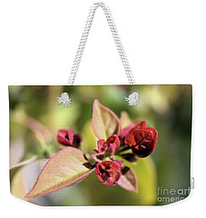 Weekender Tote Bag featuring the photograph Little Buddies 2 by Victor K