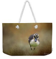 Little Cutie Weekender Tote Bag by Eva Lechner