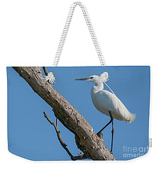 Weekender Tote Bag featuring the photograph Little Egret by Jivko Nakev
