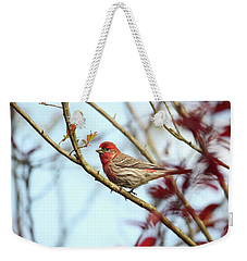 Little Finch Weekender Tote Bag