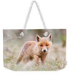 Little Fox Kit, Big World Weekender Tote Bag by Roeselien Raimond