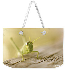Little Grasshopper Weekender Tote Bag